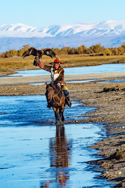 Mongolia Eagle Hunter 31.jpg