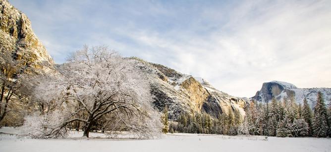 Yosemite in Winter 19.jpg