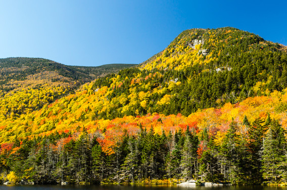 Vermont in Fall10.jpg