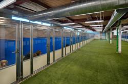 6.Enclosed Dog Kennel