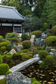 Kyoto35.jpg