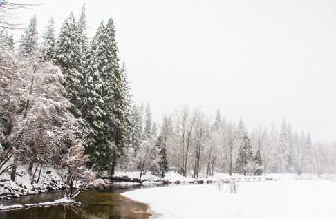 Yosemite in Winter 16.jpg