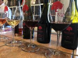 beckmen wines