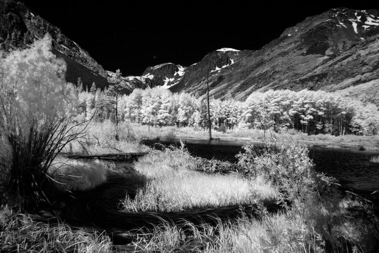 Infrared3.jpg