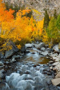 Eastern Sierra 12.jpg