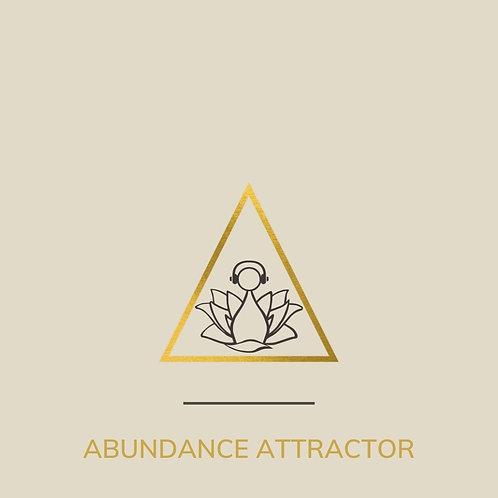 Abundance Attractor