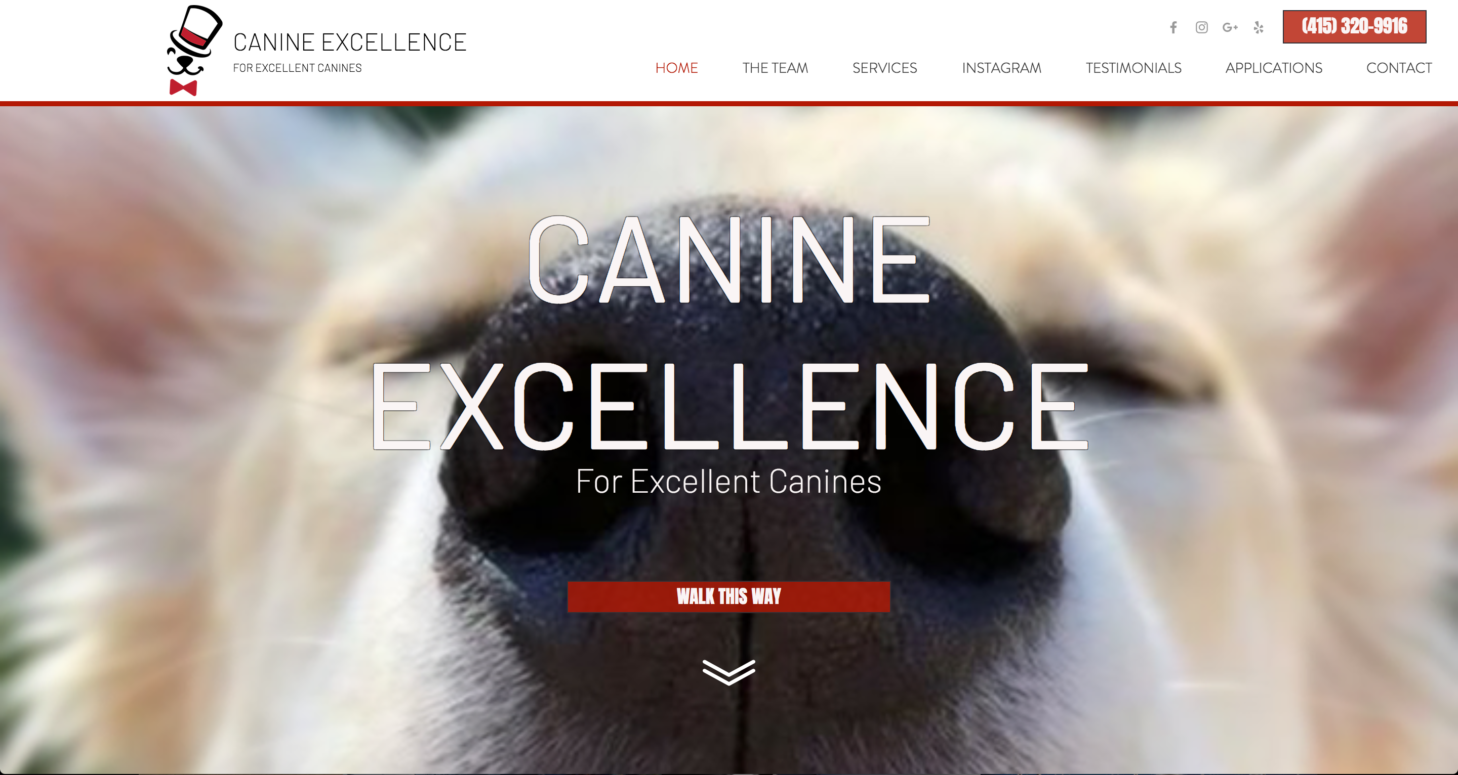 Canine Excellence