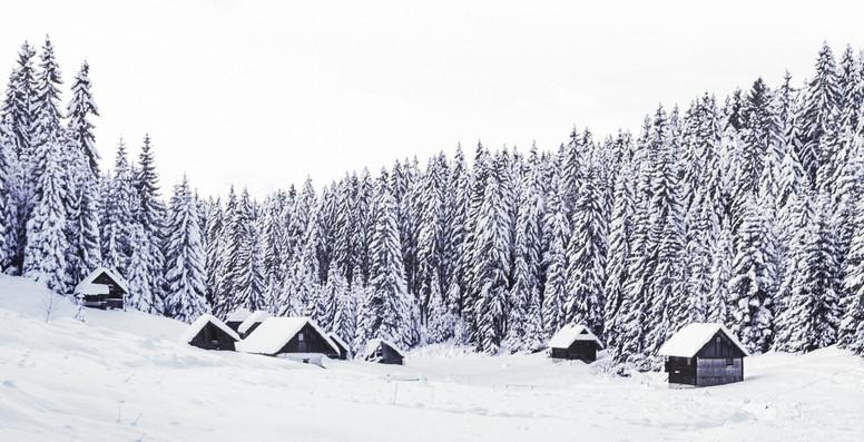 Slovenia 4.jpg