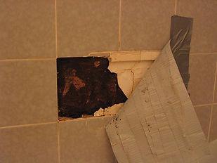 hidden-behind-mold-tile.jpg