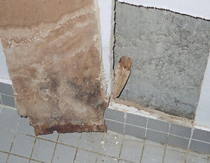 Signs-of-mold-growth-CT-1.jpg