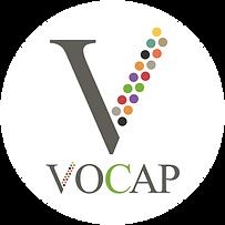 VOCAP_FB_pp1.png