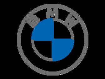 BMW Locking Wheel Nut