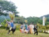 2013田楽舞い.jpg