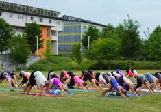 mehralsnuressen_yoga_und_cuisine-4.jpg