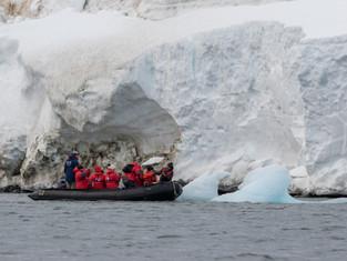 Арктический туризм с медведями не согласован!