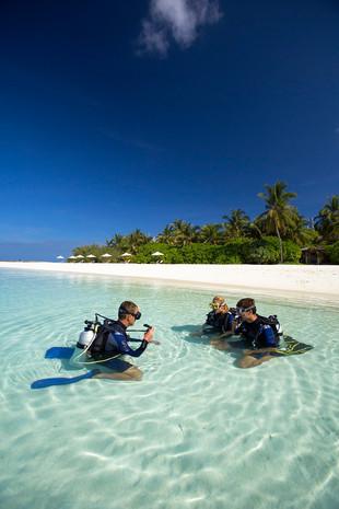 Удивительные дайв-сайты в отеле Velassaru Maldives
