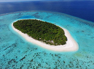 Путешествие по домашнему рифу Faarufushi Maldives: снорклинг, дайвинг и ночное погружение к подводны