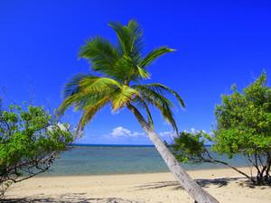 """Пляжи """"баунти""""  пользуются наибольшим спросом у туристов"""