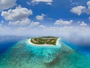 В Reethi Faru Resort поступила книга на русском языке о морской фауне Мальдив