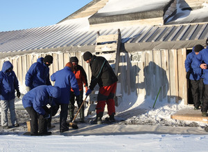 Опыт Антарктиды будут применять в «Русской Арктике»