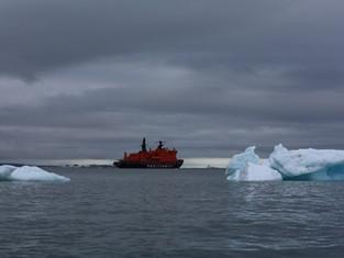 Завершились ледокольные круизы в «Русскую Арктику»