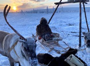 Перенос на осень Дней Арктики и Антарктики