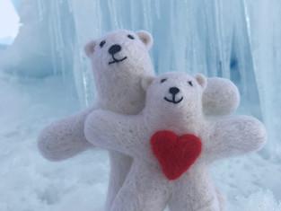 В национальном парке «Русская Арктика» подготовили расписание работы «Арктического Посольства»