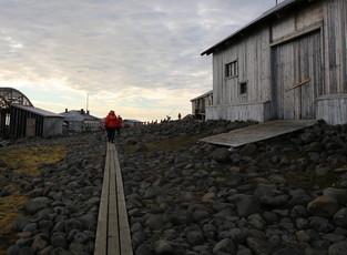 Влияние человека на природу Арктики продолжают изучать на Земле Франца-Иосифа