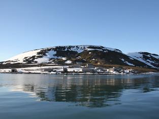 В бухте Тихой изучают влияние человека на природу Арктики