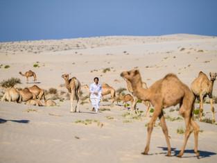 Верблюжий детский сад. Совет по туризму Катара опубликовал милые фотографии малышей.