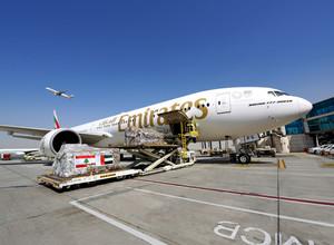 Эмирейтс продолжает оказывать помощь Бейруту, поставляя более  160 000 килограммов грузов