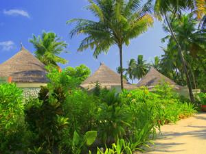 Sun Aqua Vilu Reef Maldives : стиль, подсказанный природой
