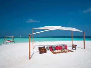 Новорожденные морские черепашки на пляже Baros Maldives