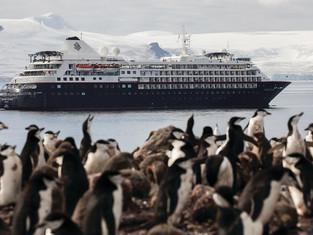 Антарктические приключения на кораблях Silversea