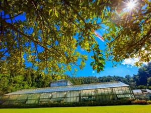 В Таиланде открываются ботанические сады