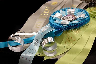_DSC3638_ribbons-SCA.jpg