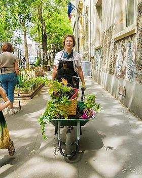 rue-du-jardin-10-1-sur-1.jpg