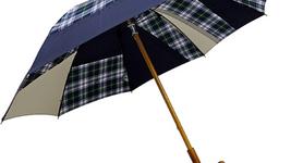 雨の日も晴れの日もちゃんと助けてくれる+RINGの傘