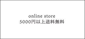 wix online link.jpg