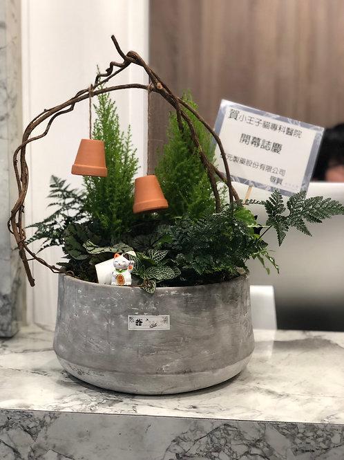桌上款組合植栽010