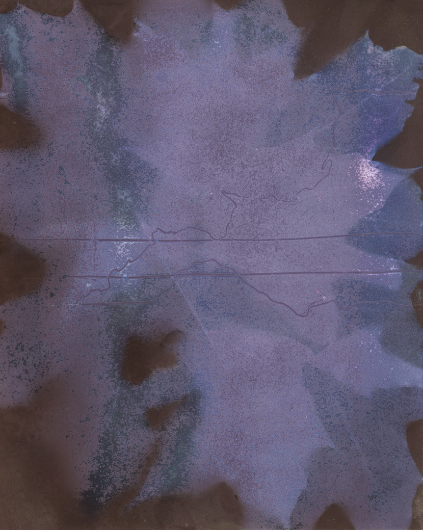 "Untitled Archival Pigment Print from Lumen Print Original 16"" x 20"" 2020"