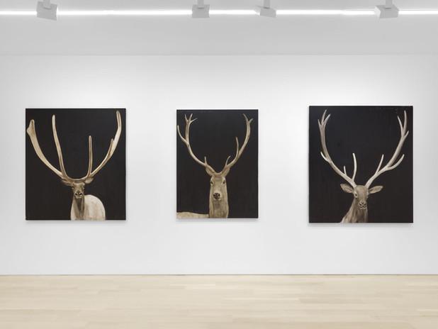 Joe Andoe: Installation View