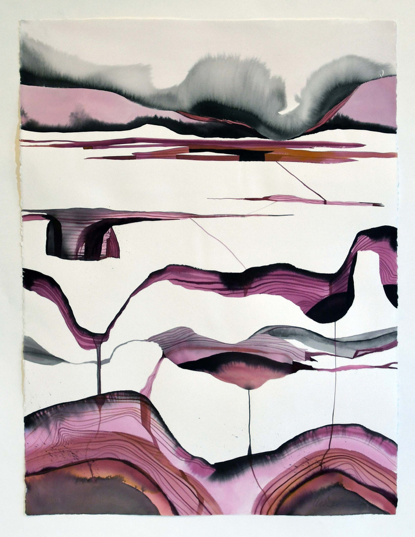Wendy Letven, Mahogany Rift, 2020. Ink on Arches Paper, 30 x 22 inches ©Wendy Letven, courtesy Fou Gallery