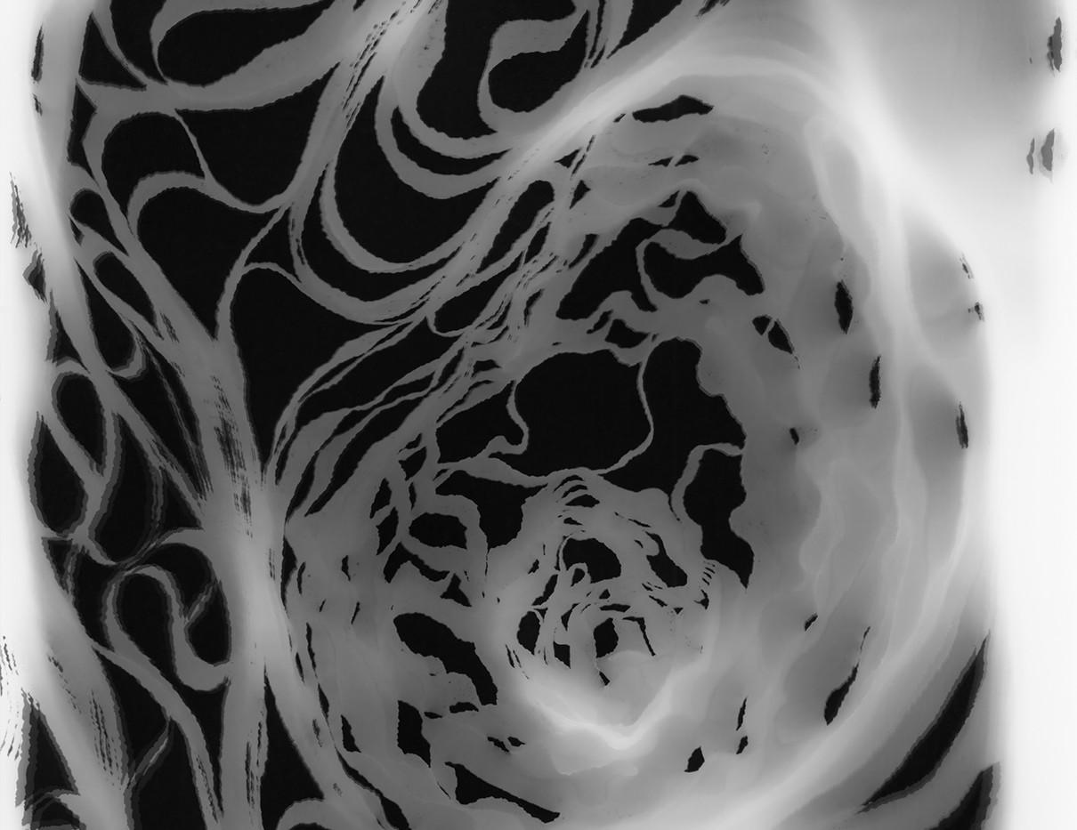 Judyta Grudzien Untitled #4 unique silver gelatin photogram on fiber paper 8 x 10 inches 2017