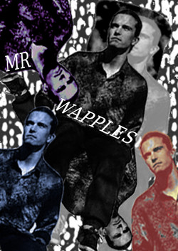 MR WAPPLES