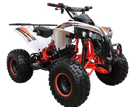 125B ATV.png