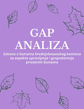 gap analiza.jpg