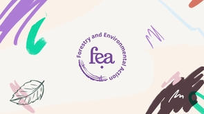 fea - Rebrand Logo - V1.mp4