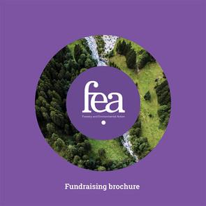 fea fundraising brochure.jpg