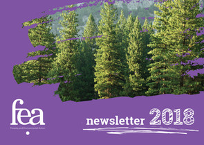 fea newsletter 2018.jpg